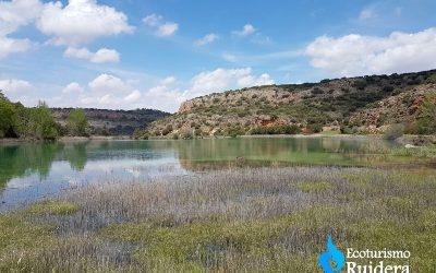 La fauna de las Lagunas de Ruidera